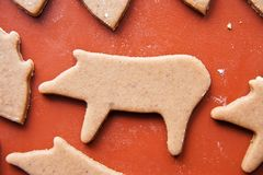 Christmas gingerbread pig Stock Image