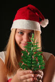 Christmas girl. Christmas blonde girl offer a little Christmas-tree, black background royalty free stock photography