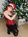 Christmas girl with cat Stock Photography