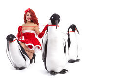 Christmas Girl in dress holding a large toy penquin. Stock Photography