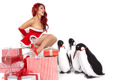 Christmas Girl in dress holding a large toy penquin. Stock Photo