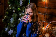 Christmas girl with gift. Girl in Christmas decorations with a gift with a good Christmas mood Royalty Free Stock Photography