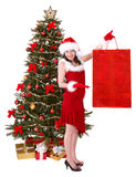 Christmas girl, shopping bag, fir tree. Stock Photo