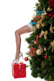 Christmas girl show sexy leg from new year tree Royalty Free Stock Photography