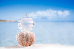 Christmas glass ball on  beach and sea urchin  with seascape ba Royalty Free Stock Photography