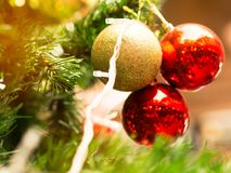 Christmas glister ball decorate on pine tree. Christmas glister ball decorate on pine tree with warm light bulb Royalty Free Stock Photo