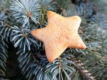 Christmas gold honey cake star Stock Photo