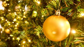 Christmas golden ball hanging on pine tree. Christmas golden ball decorate on pine tree with warm light bulb Royalty Free Stock Photography
