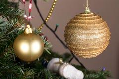 Christmas golden balls on pine tree. Stock Photo
