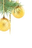 Christmas golden balls on spruce branch. Stock Image