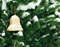 Christmas golden bell on the Christmas tree. With snow Royalty Free Stock Images