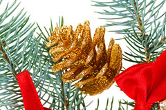 Christmas golden cone and  red bows on pine branch. Isolated on white Stock Photography