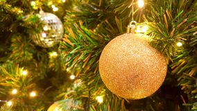 Christmas golden glister ball hanging on pine tree. Christmas golden glister ball decorate on pine tree with warm light bulb for celebration party Royalty Free Stock Image