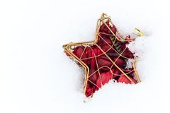 Christmas golden red star on snow isolated on white background. Christmas or New year tree red star decoration with dried flowers and plant leaves on white snow royalty free stock images