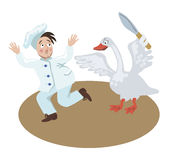 Christmas goose chases chef Stock Photos
