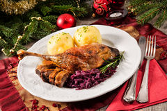 Christmas goose Stock Image