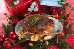 Christmas goose Royalty Free Stock Photos