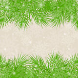 Christmas green background Christmas-tree branches Stock Photos