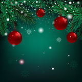 Christmas green background with fir branches and balls.  Stock Photo