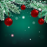 Christmas green background with fir branches and balls.  Royalty Free Stock Image