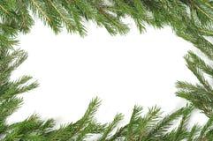 Christmas green border. Christmas green framework isolated on white background Royalty Free Stock Photography