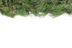 Christmas green border Stock Photography