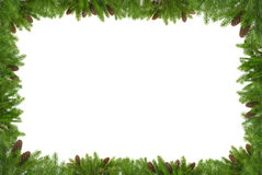 Christmas green framework Royalty Free Stock Image
