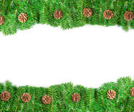 Christmas green framework Stock Photos