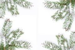 Christmas green framework isolated on white background Stock Photos