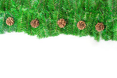 Christmas green framework with Pine needles royalty free stock image