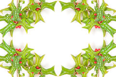 Christmas green framework with studio shot Stock Images