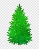 Christmas green spruce tree. Silhouette with glitter on transparency background Royalty Free Stock Photos
