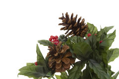 Christmas Greenery Royalty Free Stock Photos