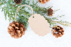 Christmas Greenery. Blank holiday gift tag with snow, greenery and pine cones stock images
