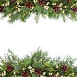 Christmas Greenery Border Stock Photo