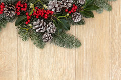 Christmas Greenery Royalty Free Stock Photography