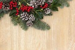 Christmas Greenery Royalty Free Stock Photography