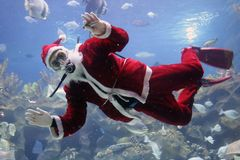 Christmas Greeting. From Santa Clause diver. (note: image is slightly grainy due to low light condition Royalty Free Stock Photo