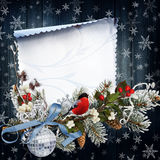 Christmas greeting background. Вlue background with pine branches, berries, beautiful Christmas decorations Stock Images