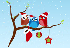 Christmas greeting with birds sitting on branch Royalty Free Stock Photo