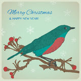 Christmas greeting card with bird sitting on twigs Stock Images