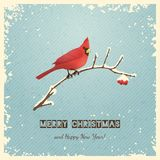 Christmas Greeting Card with Bird Stock Image