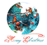 Christmas greeting card. Birds on branches in the winter forest.  Royalty Free Stock Photography