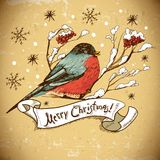 Christmas Greeting Card with bullfinches Royalty Free Stock Photography