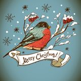 Christmas Greeting Card with bullfinches Royalty Free Stock Photos