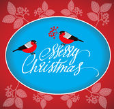 Christmas Greeting Card with bullfinches and handdrawn lettering. Stock Photos