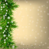 Christmas  Greeting card with Christmas tree and snowflakes Stock Images