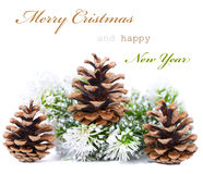 Christmas greeting card with cones. Christmas greeting card with decorative cones isolated on white background (with sample text Stock Photography