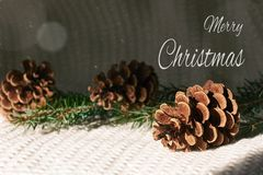 Christmas greeting card. Fir branches with cones on knitted white background. Christmas greeting card with text. Fir branches with cones on knitted white royalty free stock image