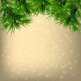 Christmas Greeting card with fir twigs and snowflakes. Golden Christmas and New Year Greeting card with fir twigs and snowflakes Royalty Free Stock Photo